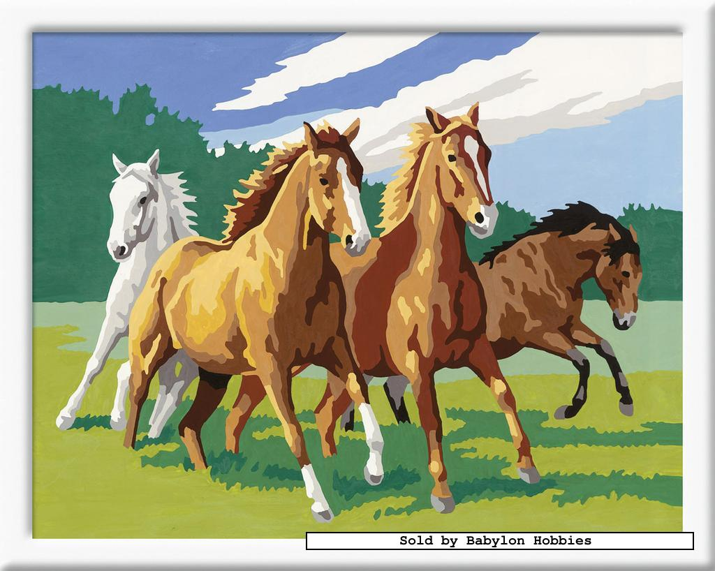 Painting by Numbers - Wild horses (by Ravensburger) 283743 ...
