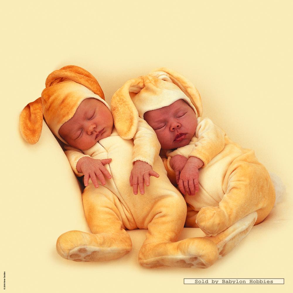 Schmidt Jigsaw Puzzle 1000 Pcs Anne Geddes Baby Bunnies
