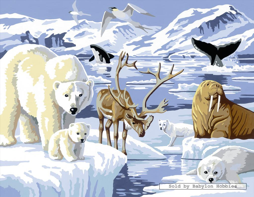 painting by numbers animals in the artctic by. Black Bedroom Furniture Sets. Home Design Ideas